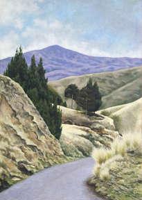 paisaje en los páramos