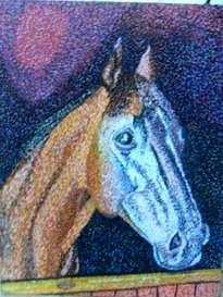 cara caballo