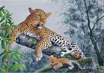 femelle leopard