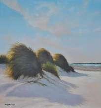 tarde de viento en la playa