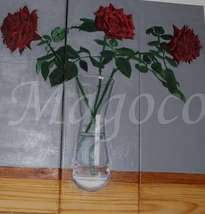 mis tres rosas del jardin