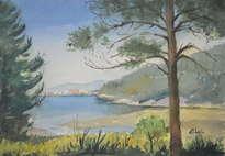 paisaje de o grove