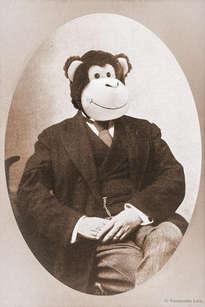 monsieur singe