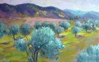 oliveres al priorat