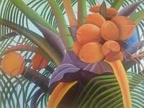 cocos caribeños