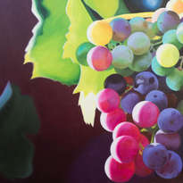 uvas#3