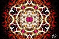 flor ígnea