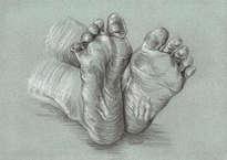 pies estilo durero