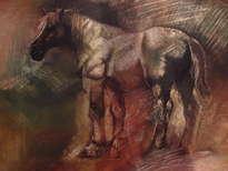 caballo en la penumbra