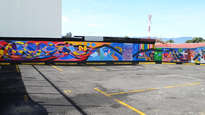 mural biblioteca pública de goicoechea