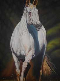 caballo blanco