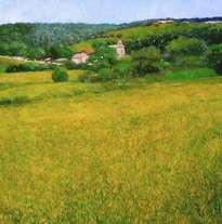 paisaje de flores amarillas