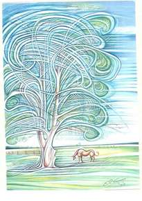 eucalipto sòlo para el pingo