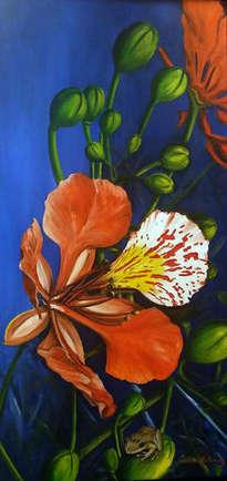 flor de flamboyan