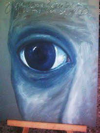 ojos (serie)