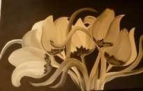 tulipanes nocturnos