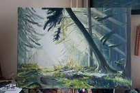 forest lights