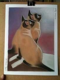 gatos siameses mirando la noche