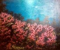 arrecifes