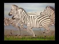 zebras en el prado