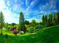 las bellezas del parque