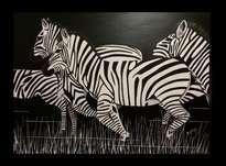 zebras en la noche
