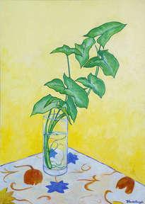 vaso con planta