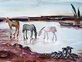 caballos en río paraná
