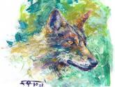 lobo espatulado