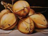 cocos dorados