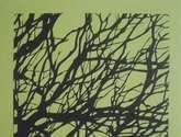 arborix verde