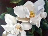 """""""magnolias"""""""
