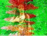 La flor escarlata
