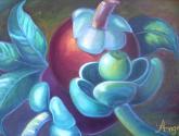 variaciones pictoricas del mangostino 2