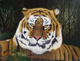tigre servidor