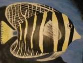 pez rayas