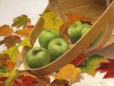 canasto de manzanas