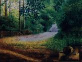 senderos del aconcagua - camino