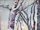 Árboles en gris