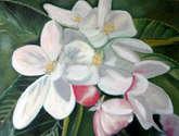 f05  flor de manzano (2012)