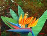 ave del paraiso - óleo sobre lienzo
