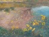 hojas en el lago