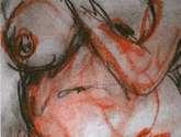 inmaculada lara cepeda, maku, desnudo nude woman girl chica mujer orange naranja