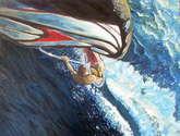 splash trasluchada
