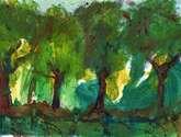 arboles bäume trees moritzburg