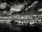 veleros en la marina