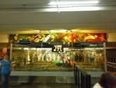 murales bicentenario y centenario en el metro zócalo 5/6