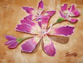 flores de algarrobo