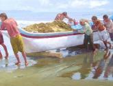 pescadores ii