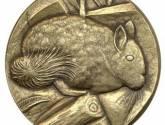 chinchilla lanigera